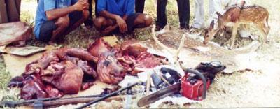 poaching2