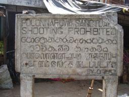 sanctuary-board-kaduruwela-