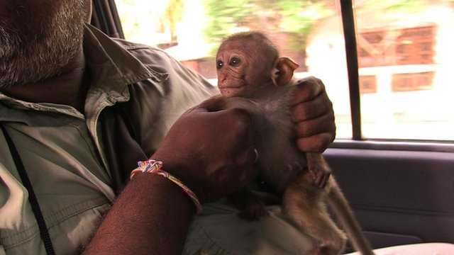 sunil rescue rejected orphan